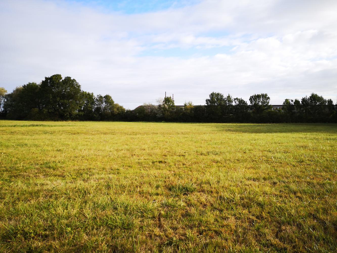 Projet de parc photovoltaïque au sol sur la commune de Sennecey-le-Grand